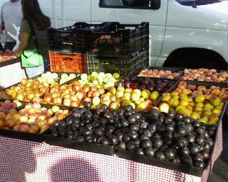 HPFMstonefruits